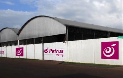 Petruz Fruity (Brazil)